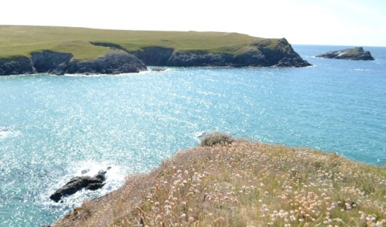 CPRE Cornwall